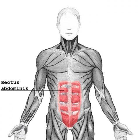 Plan de 28 días de entrenamiento para abdominales